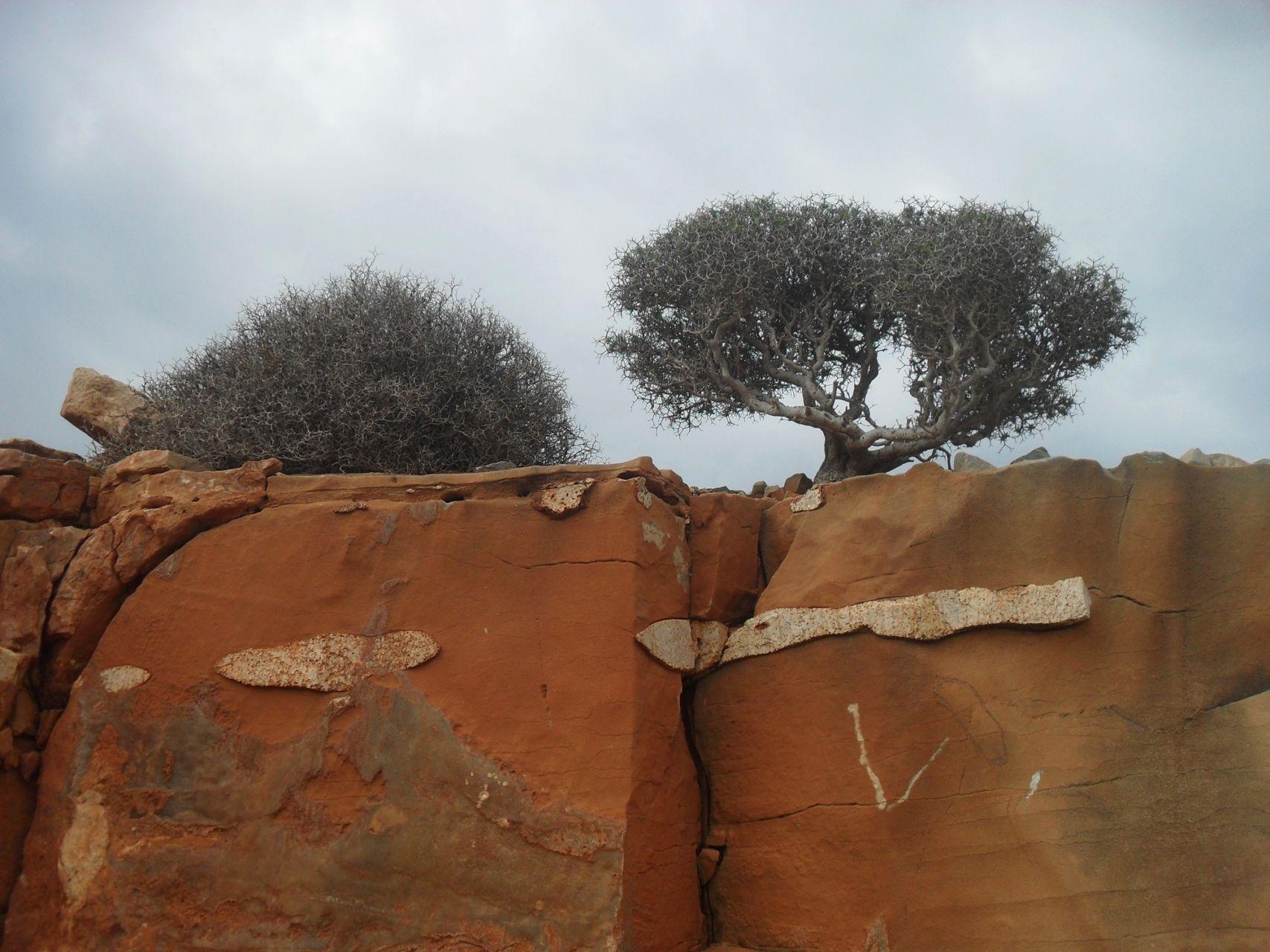 sitia-geopark
